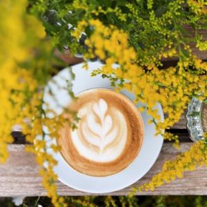 Impressionen | Kaffeetasse unter Blüten