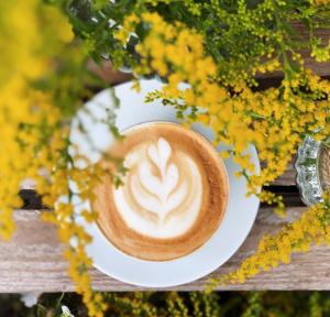 Kaffee auf Bank unter gelben Blumen